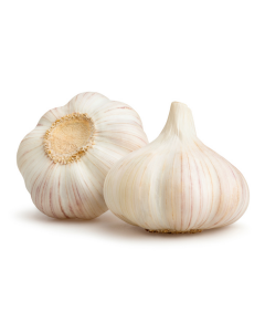 Garlic, pack of five (5)