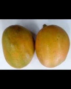 Mango- Julie (per single)