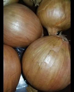 Onion, one (1) pound