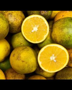 Orange, (per half 1/2 dozen)