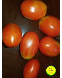 Tomato- Plummy  , one (1) pound