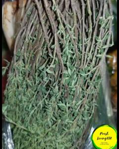 Thyme, per Bundle